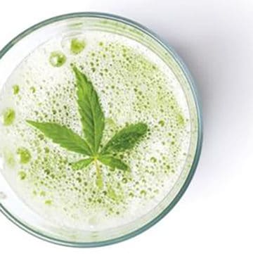 cbd smoothie recipes