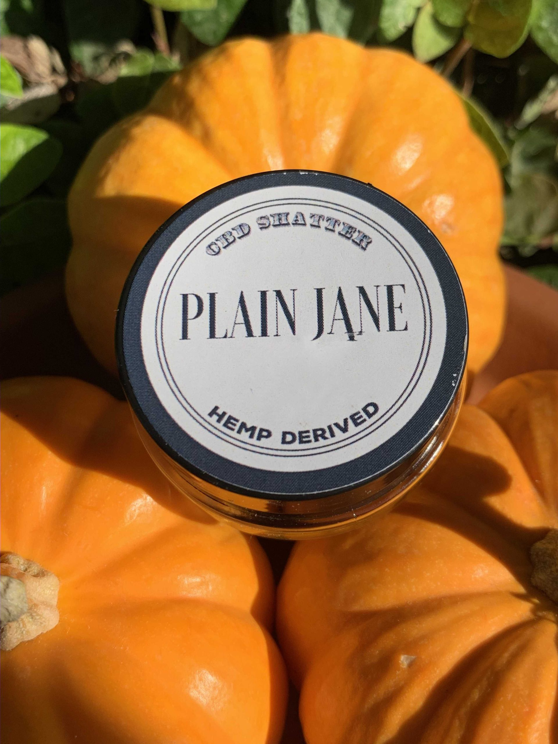 plain jane cbd distillate for sale