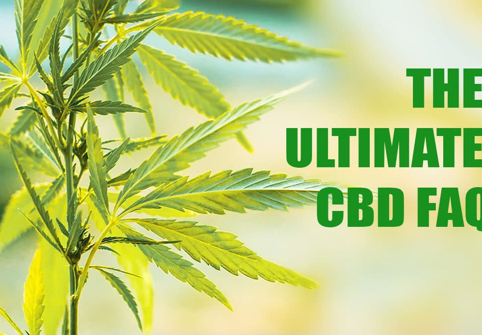 the ultimate cbd faq