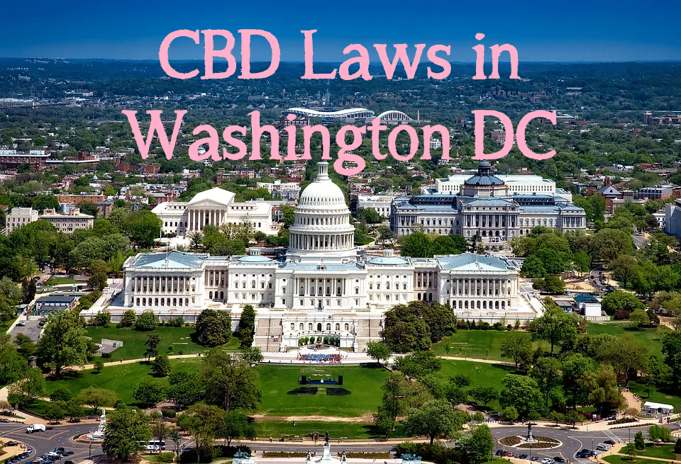 washington dc cbd leyes