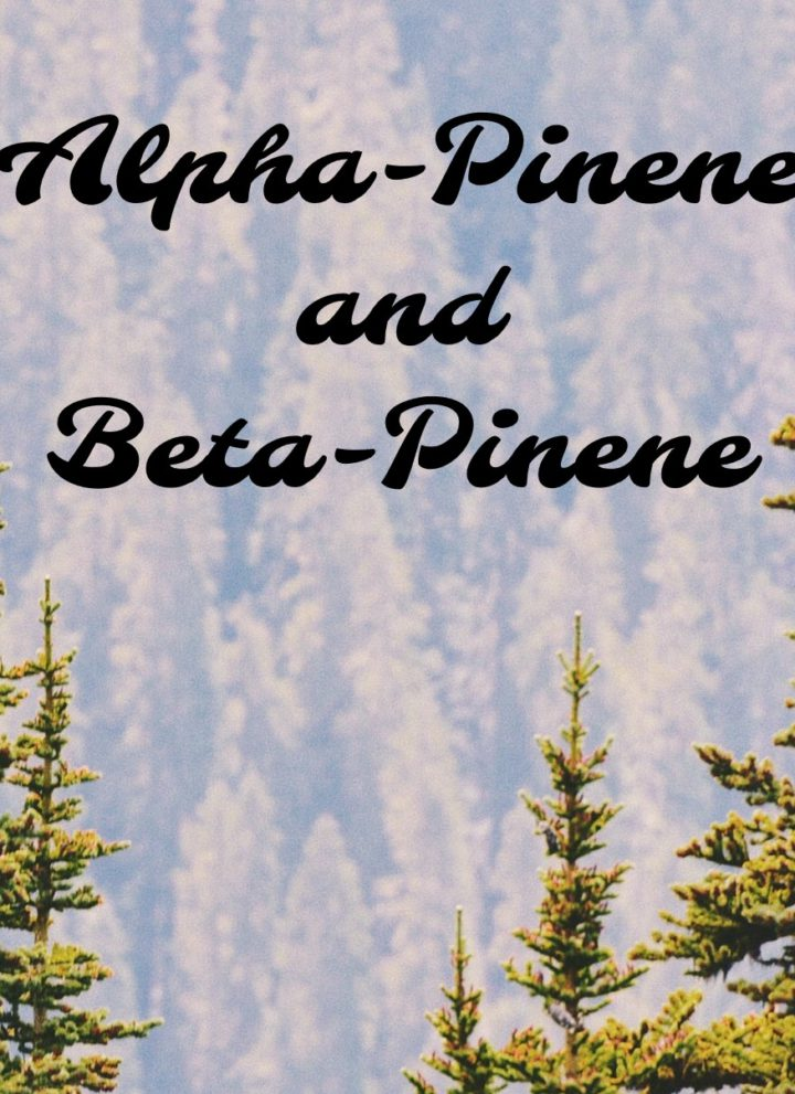 título alfa-pineno y beta-pineno terpenos