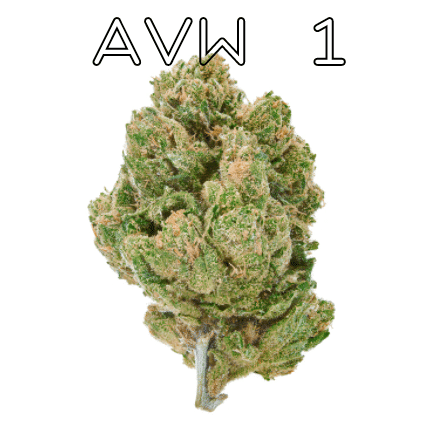 avw 1 strain review title