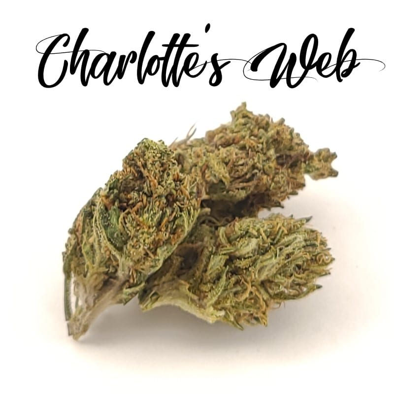 charlotte's web hemp strain review