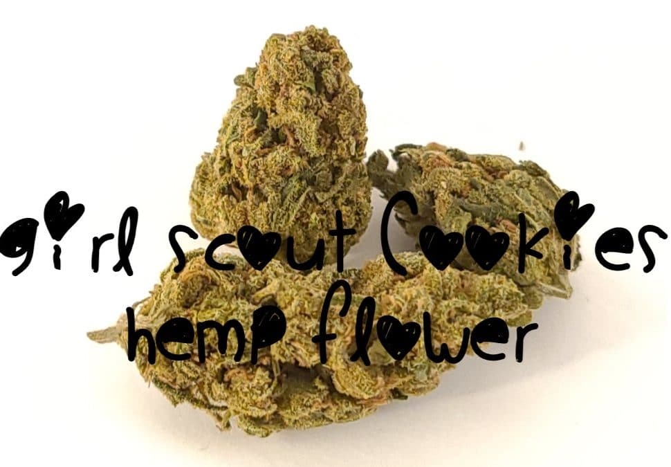 girl scout cookies hemp flower review