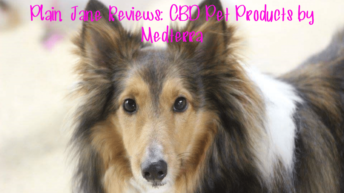 review of cbd pet products by medterra