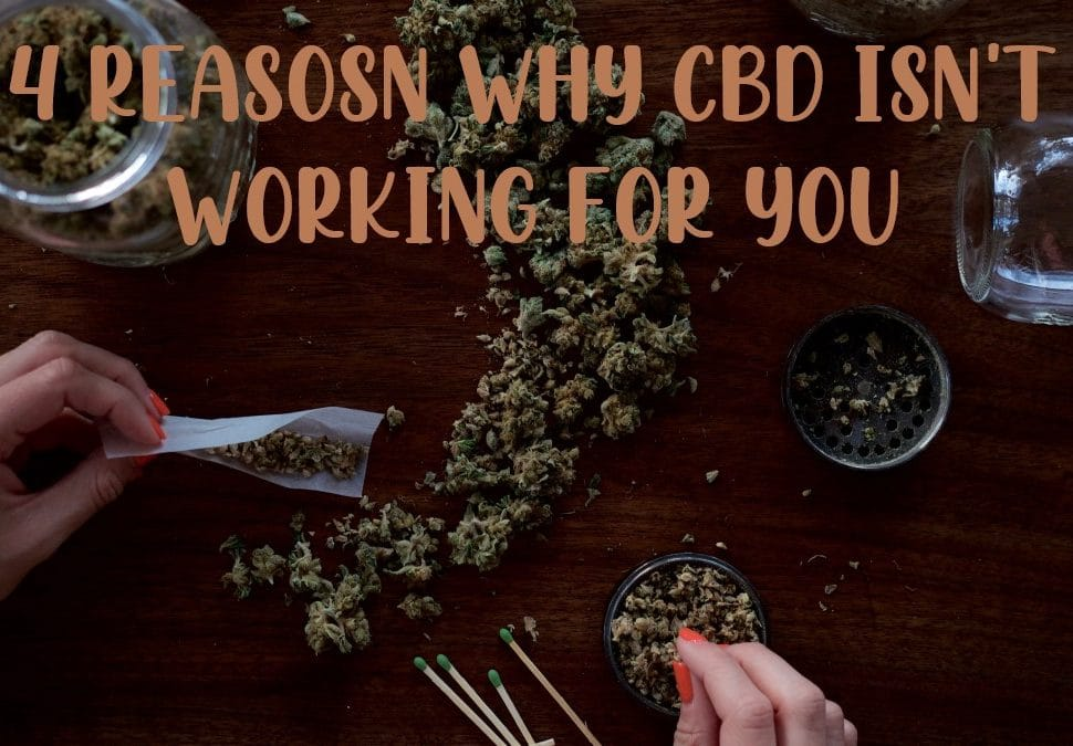 reasons why cbd isn't working for you